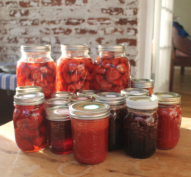 Preserving strawberries from britinthesouth.com