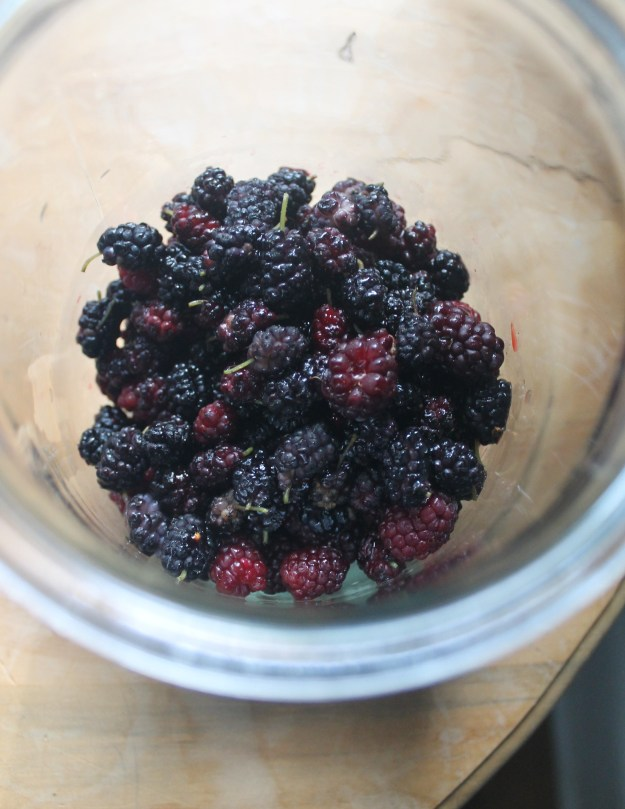 Mulberry and blackberry shrub from britinthesouth.com