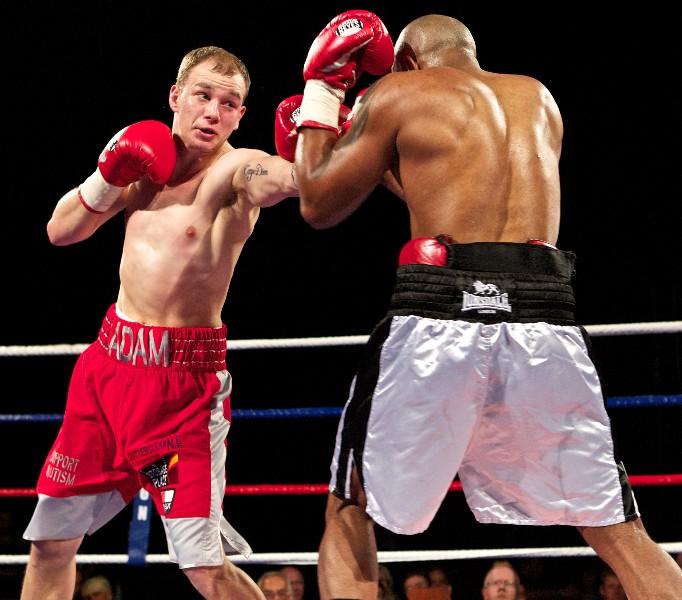 adam little boxer from hattons
