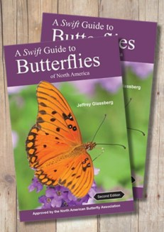 A Swift Guide to Butterflies of North America (2nd Edition)