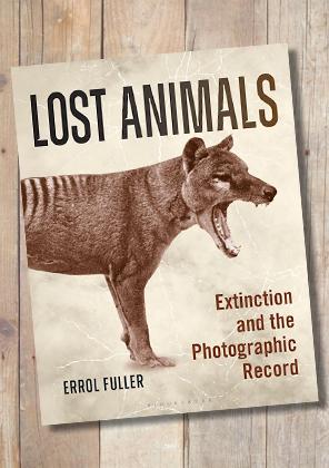 Lost Animals by Errol Fuller