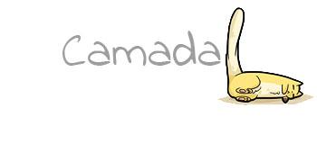 Camada L3