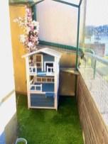 terrazas gatificadas de nadya - 3