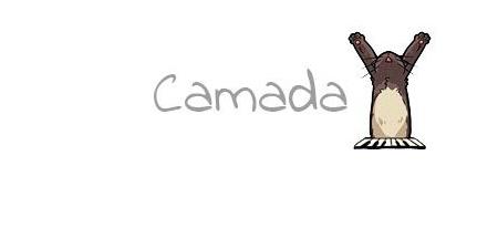 CAMADA Y3