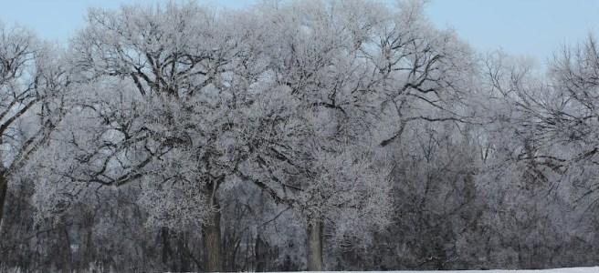 Winter Regions