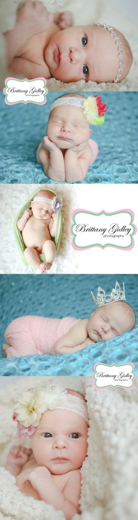 Introducing Harper | Cleveland Newborn Photography