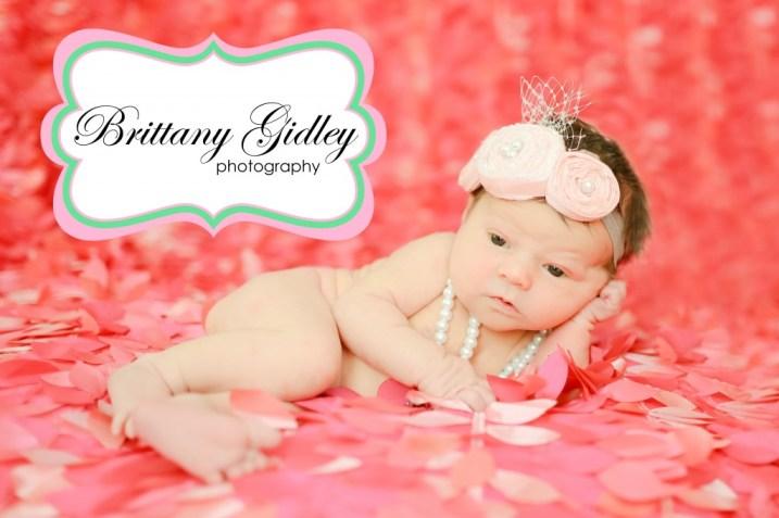 Newborn Baby Photography Cleveland | Brittany Gidley Photography LLC