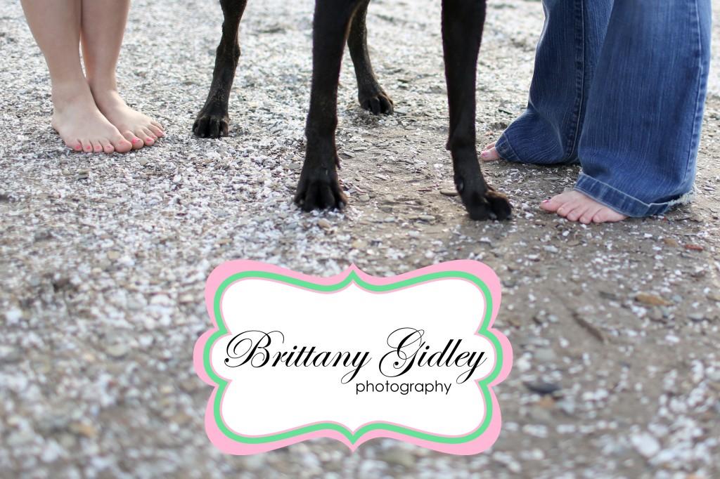 Cleveland Dog Photographer | Brittany Gidley Photography LLC
