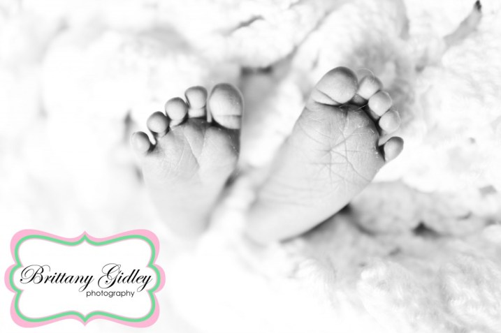 Newborn Baby Photographer | Brittany Gidley Photography LLC