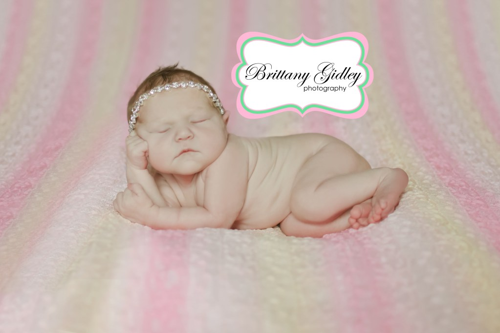 Introducing Olivia M | Newborn Baby Photographer