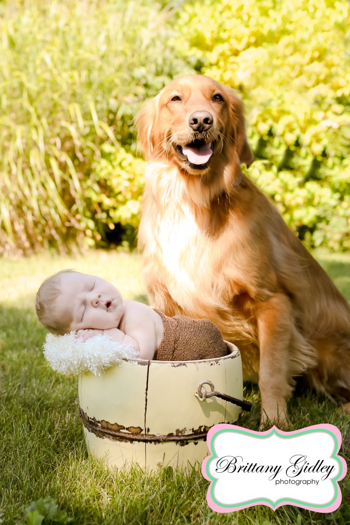 Newborn Baby Boy With His Dog | Brittany Gidley Photography LLC