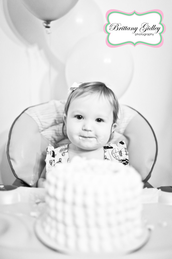First Birthday Photographer | Brittany Gidley Photography LLC