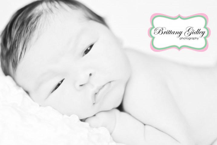 Avon Newborn Baby Photographer | Brittany Gidley Photography LLC