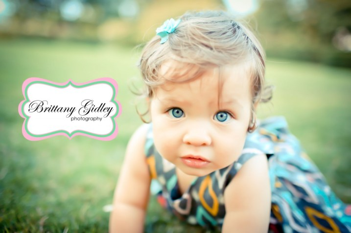 12 Month Cake Smash | Brittany Gidley Photography LLC