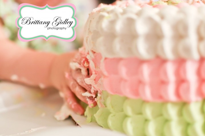 Baby Birthday Party Pink Green | Brittany Gidley Photography LLC