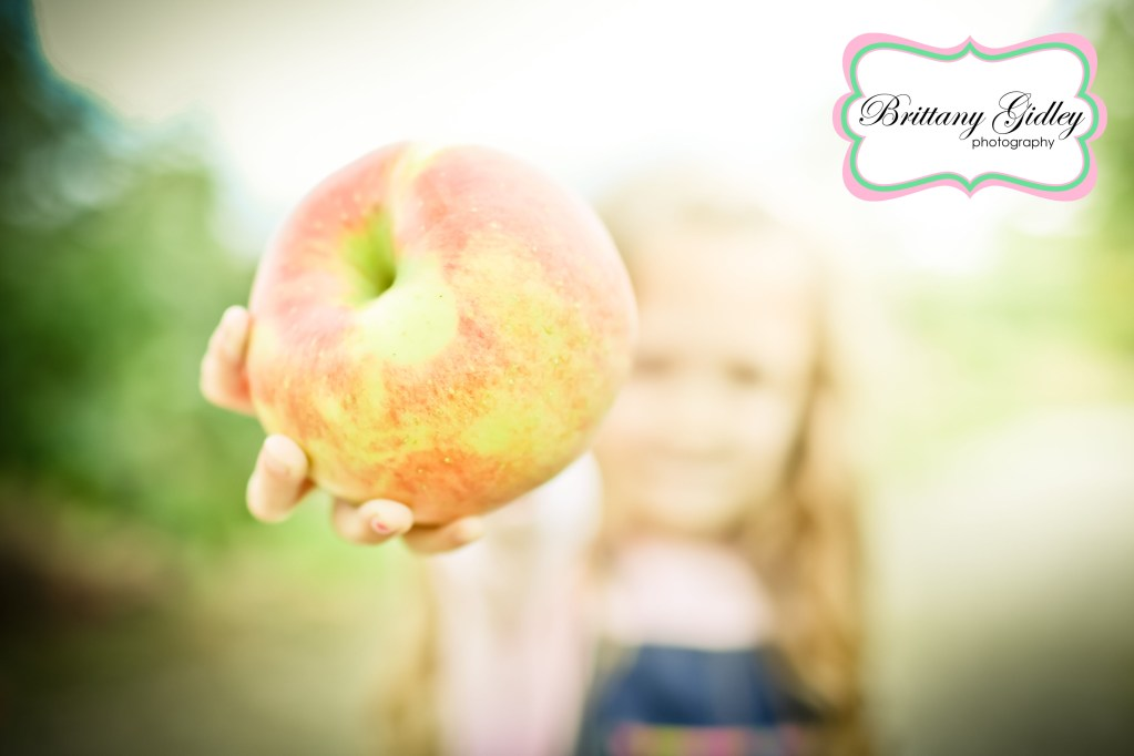 The Bayer Girls | Apple Orchard Family Pictures