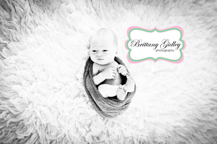 Medina Newborn Photographer | Brittany Gidley Photography LLC