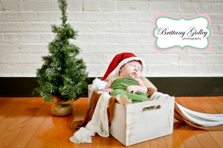 Christmas Baby | Brittany Gidley Photography LLC