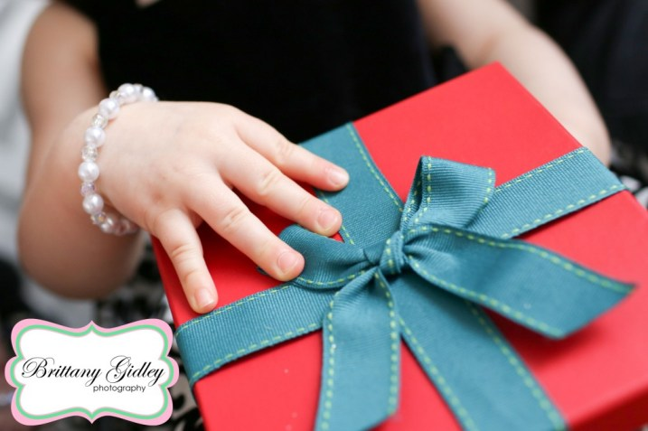 Holiday Mini Sessions | Brittany Gidley Photography LLC