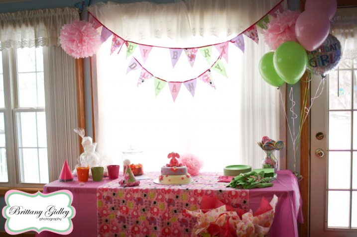 Elephant Themed First Birthday | Brittany Gidley Photography LLC