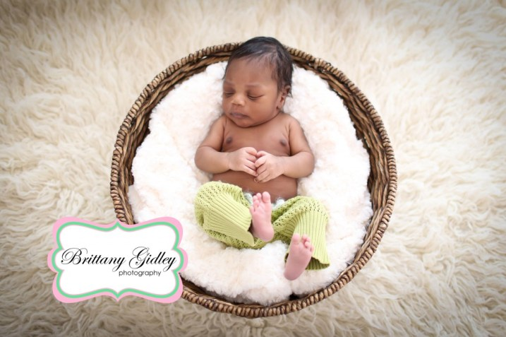 Best Newborn Photographers | Brittany Gidley Photography LLC