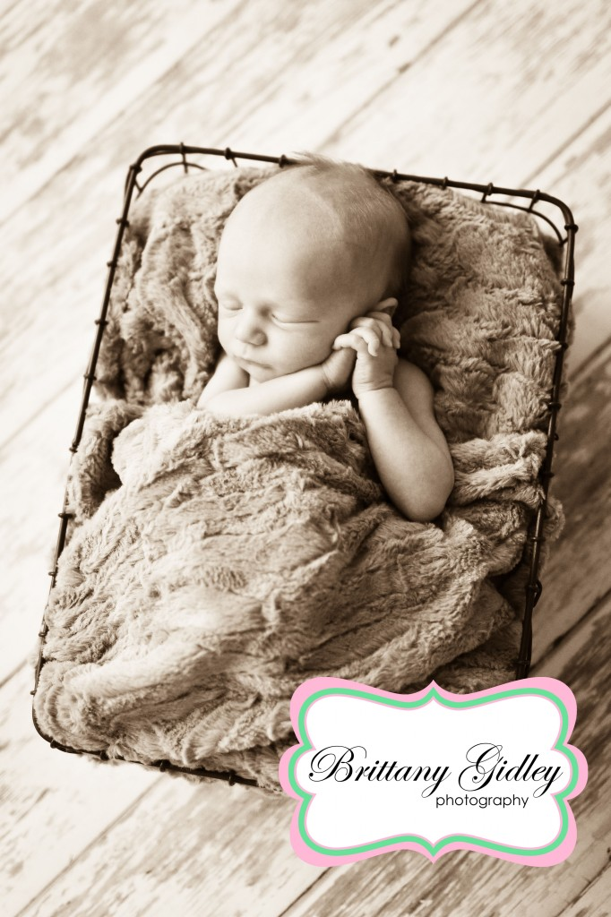 Newborn | Brittany Gidley Photography LLC
