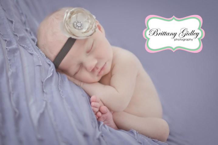 Purple Newborn | Brittany Gidley Photography LLC