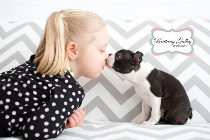Puppy Kisses | Boston Terrier | Baby | Brittany Gidley Photography LLC
