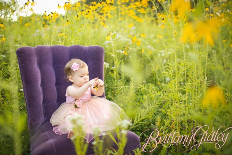 Akron Photography | Start With The Best | Brittany Gidley Photography LLC | Toddler Photography | Baby Photography | Field | Flowers | Purple | Pink