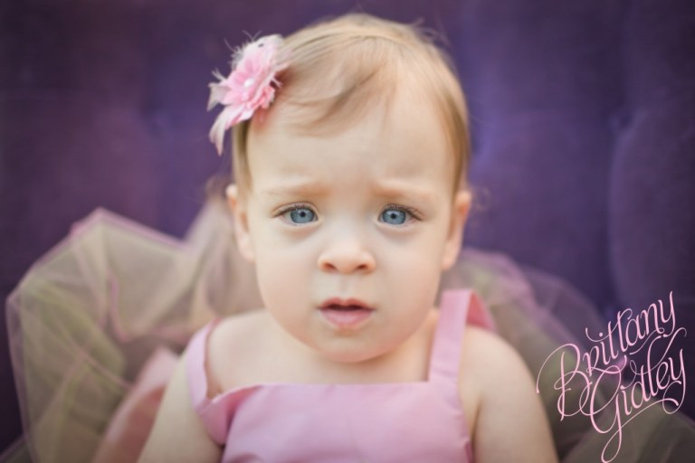 Family Photography | Start With The Best | Brittany Gidley Photography LLC | Toddler Photography | Baby Photography | Field | Flowers | Purple | Pink