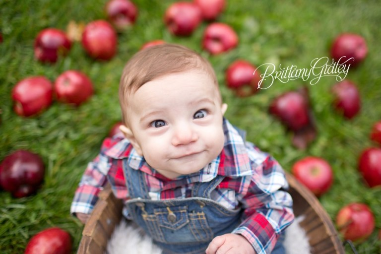 6 Months | Apple Orchard | Chesterland, OH | Baby | Brittany Gidley Photography LLC