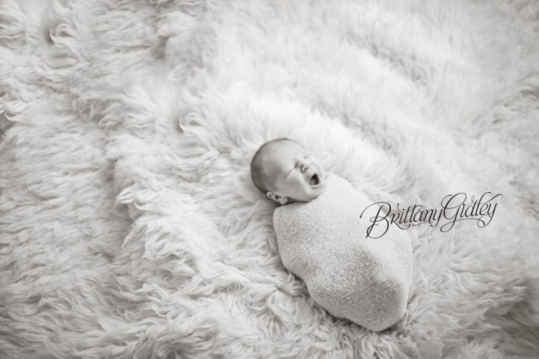 Studio Newborn | Portraits | Baby Photography | Start With The Best | Brittany Gidley Photography LLC