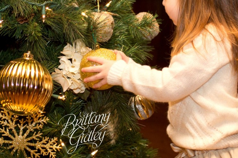 Country Club Family Photography | Congress Lake Country Club | Hartville Ohio | Holiday | Christmas | Brittany Gidley Photography LLC