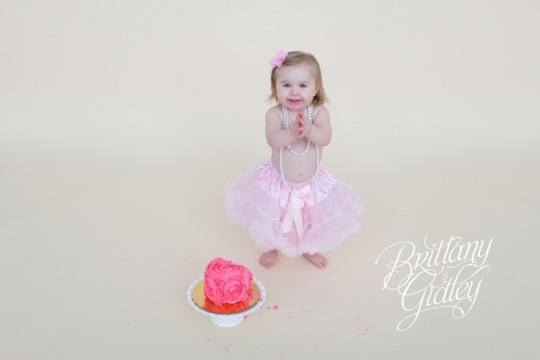 First Birthday Photographer | Child Photography | Toddlers | Family | Celebration | 1 Year Old | 3 Year Old