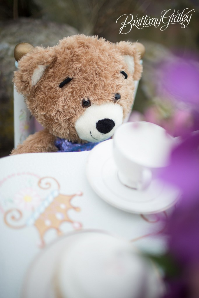 Teddy Bear Tea Party | Cleveland Ohio | Child Photography | Child Photographer | Brittany Gidley Photography LLC