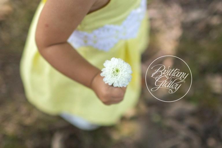 Photo Shoot | Shaker Heights, Ohio | Family | Child Photographer