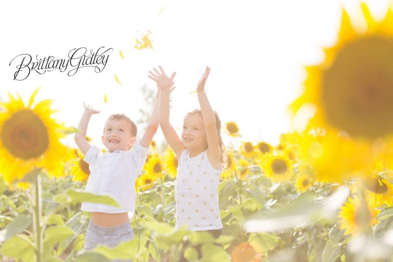 Flower Photo Shoot | Brittany Gidley Photography LLC | Sunflowers | Twins