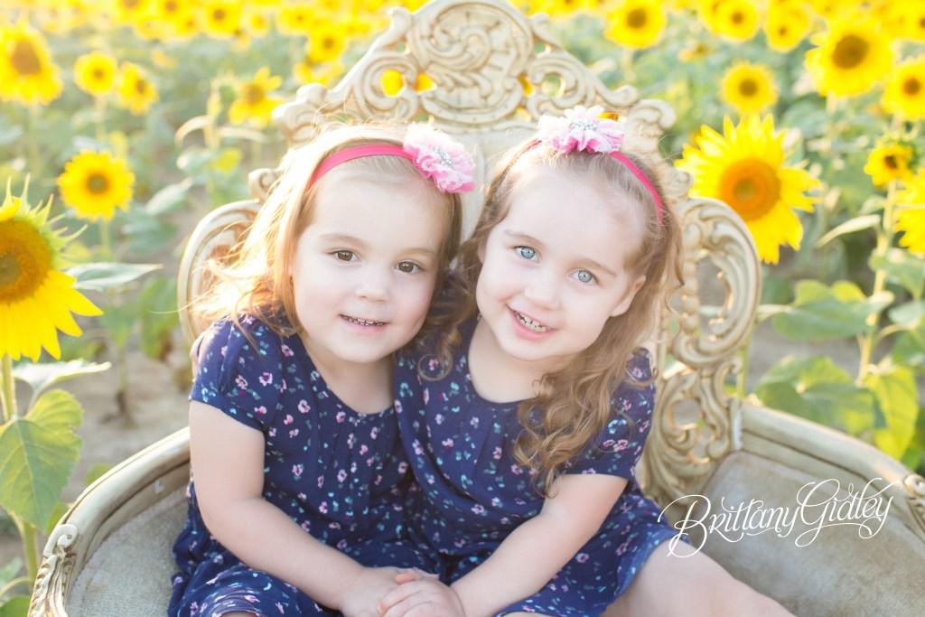Prayers From Maria Sunflower Field