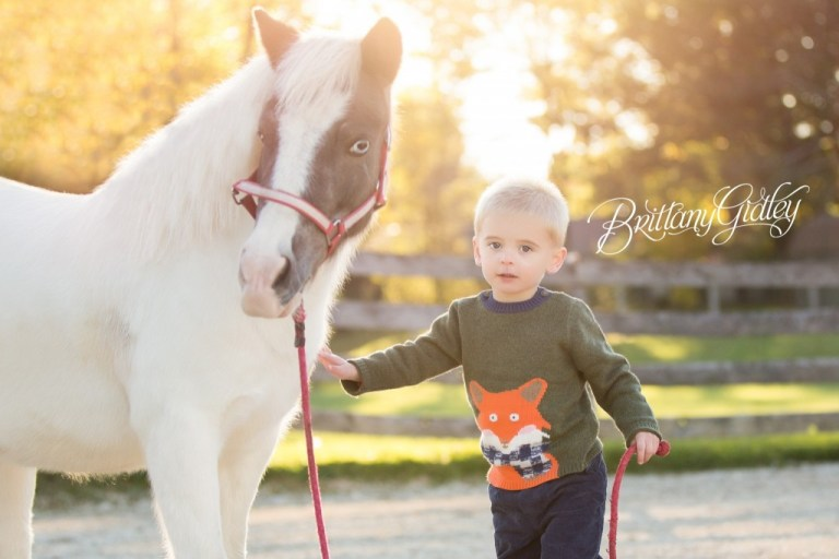 Cleveland Pony Photo Shoot | Child Photography | Child Photographer | Horse | Equine | Pony Party
