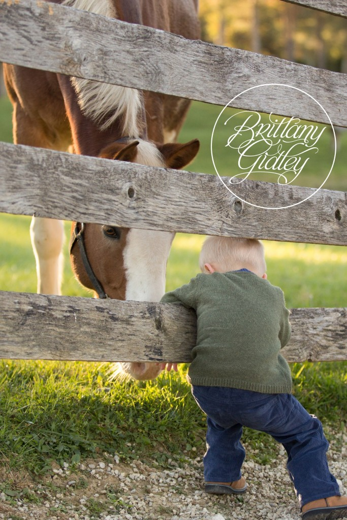 Cleveland Horse Photo Shoot | Child Photography | Child Photographer | Horse | Equine | Pony Party