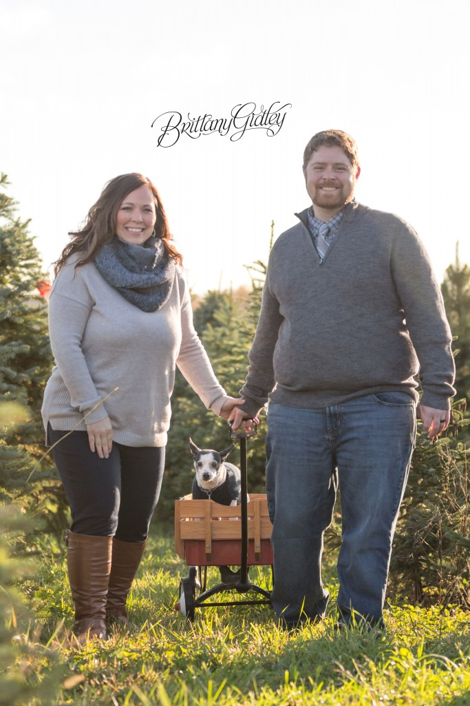 Tree Farm Dream Mini Sessions-1