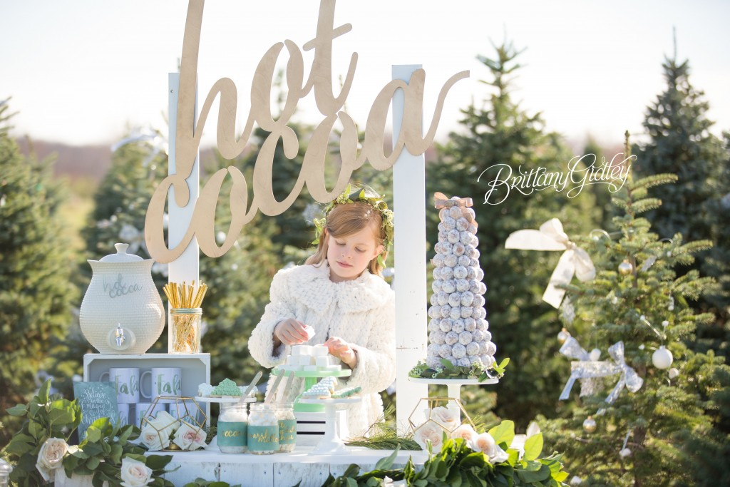 Tree Farm Dream Mini Sessions-23