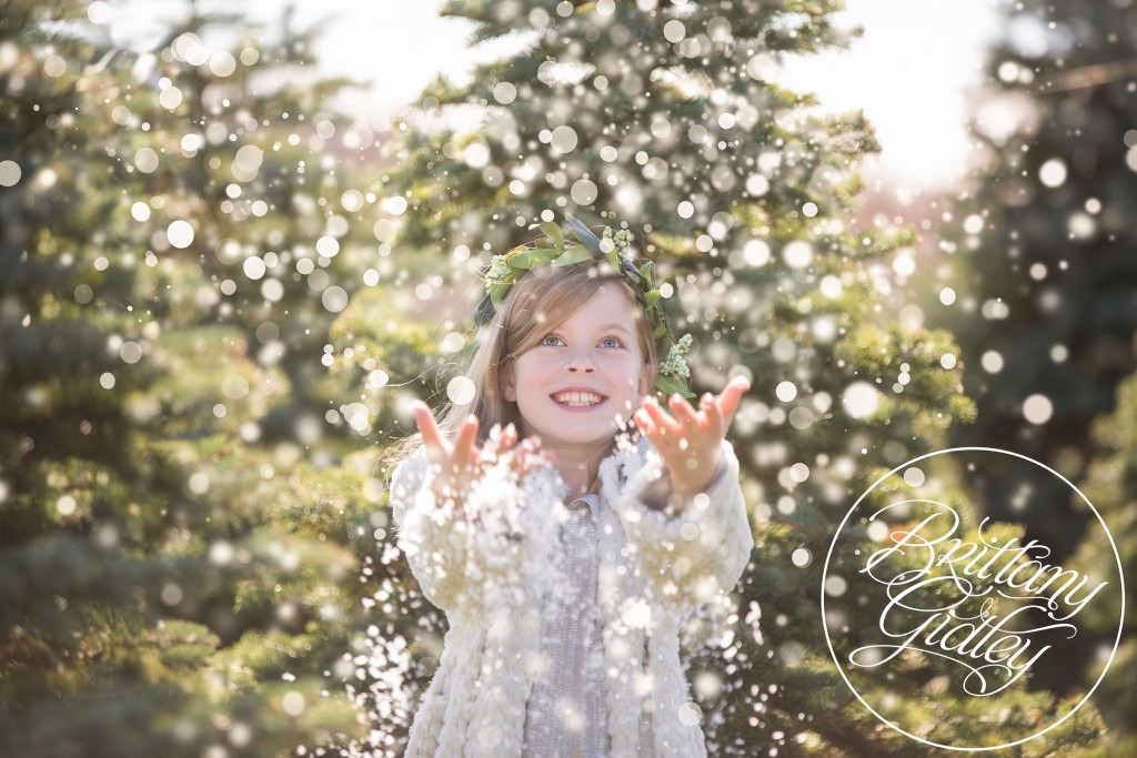 Tree Farm Dream Mini Sessions-26