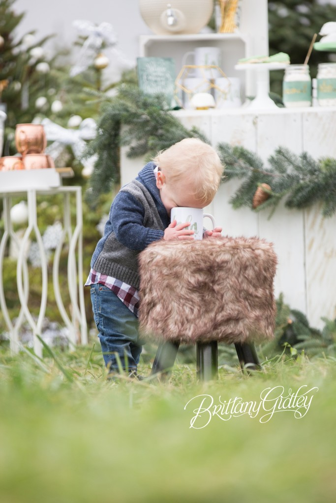 Tree Farm Dream Mini Sessions-41