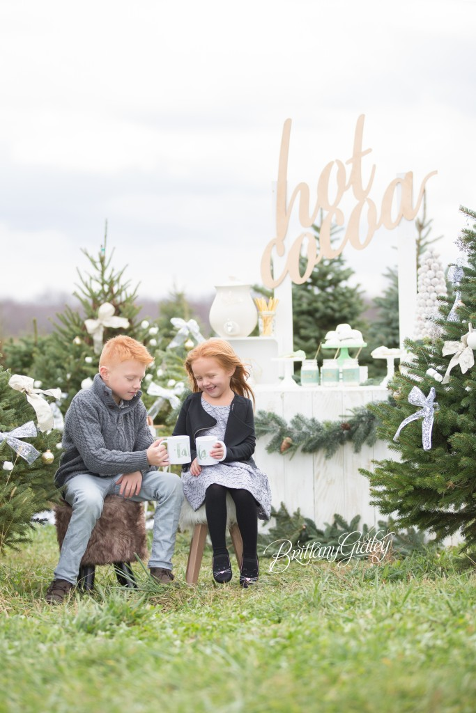 Tree Farm Dream Mini Sessions-45