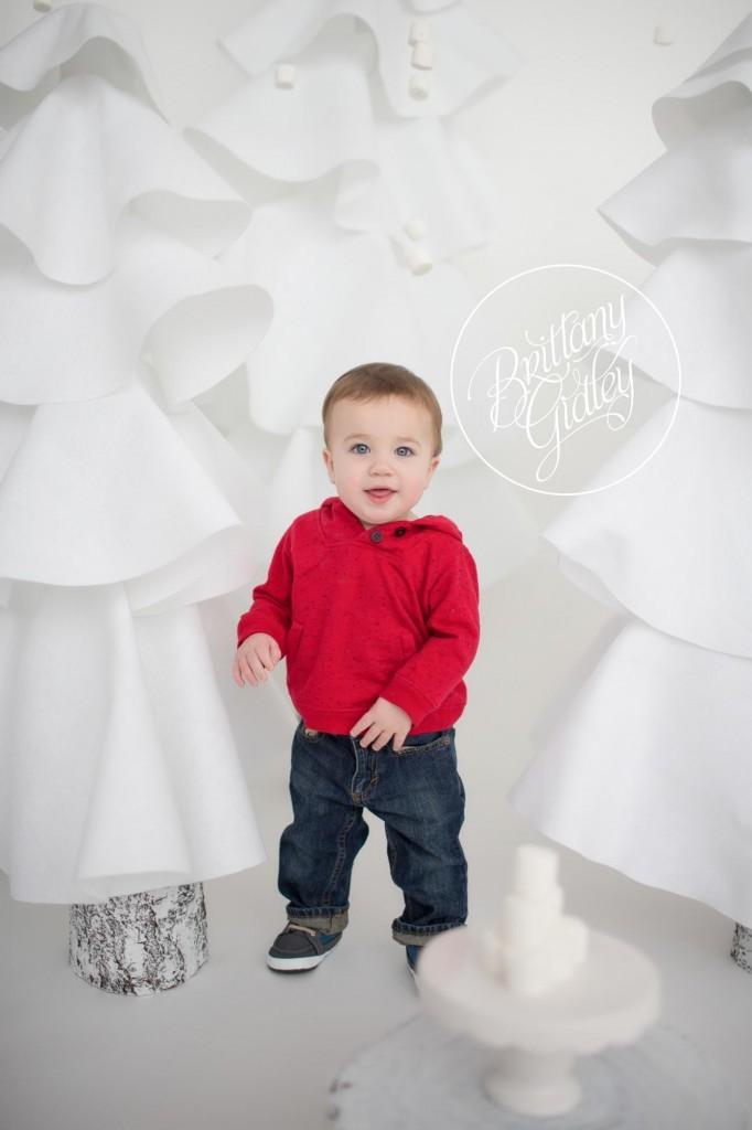 12 Month Baby | Cake Smash Session | Cleveland Ohio