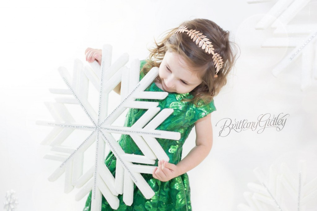 Cleveland Christmas Mini Sessions-18