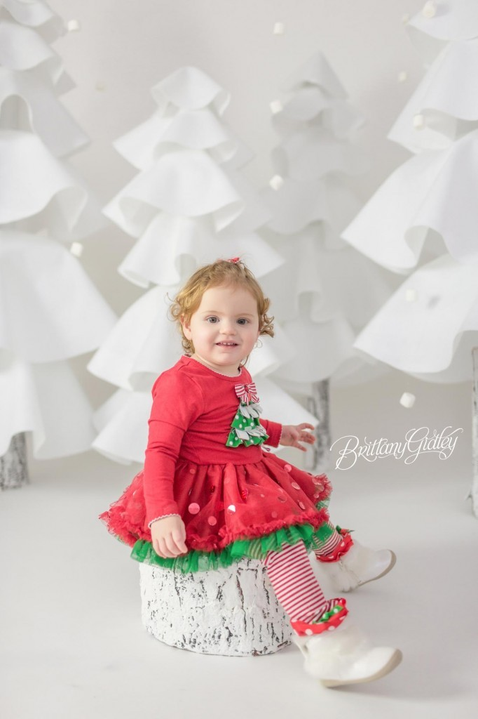 Cleveland Christmas Mini Sessions-23