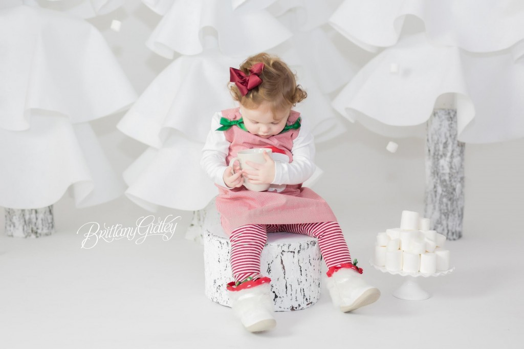 Cleveland Christmas Mini Sessions-25