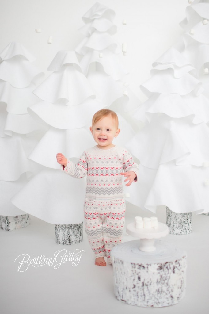 Cleveland Christmas Mini Sessions-61
